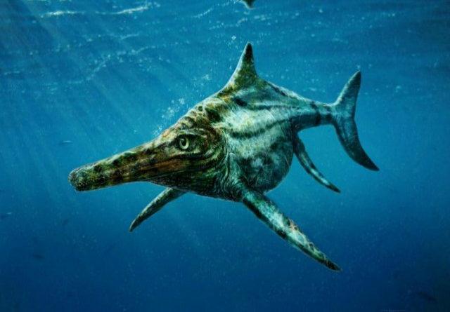 TechnoBlitz.it Il mostro di Loch Ness è reale...