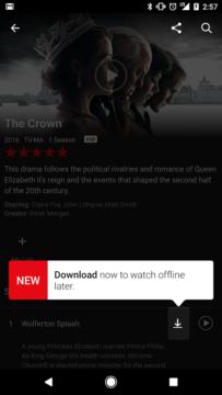TechnoBlitz.it Netflix : da oggi sarà possibile scaricare film e serie