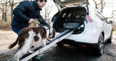 TechnoBlitz.it Nissan: il prototipo X-Trail 4Dogs, l'auto ideale per i cani