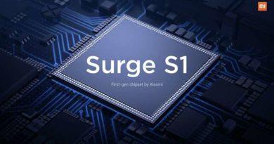 Pinecone Surge S1